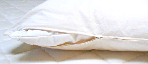 Organic Cotton Pillow Protector