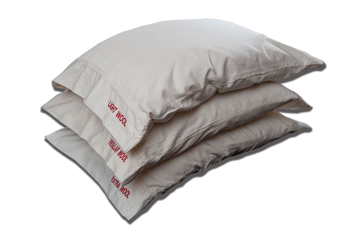 Oganic Bed Pillows
